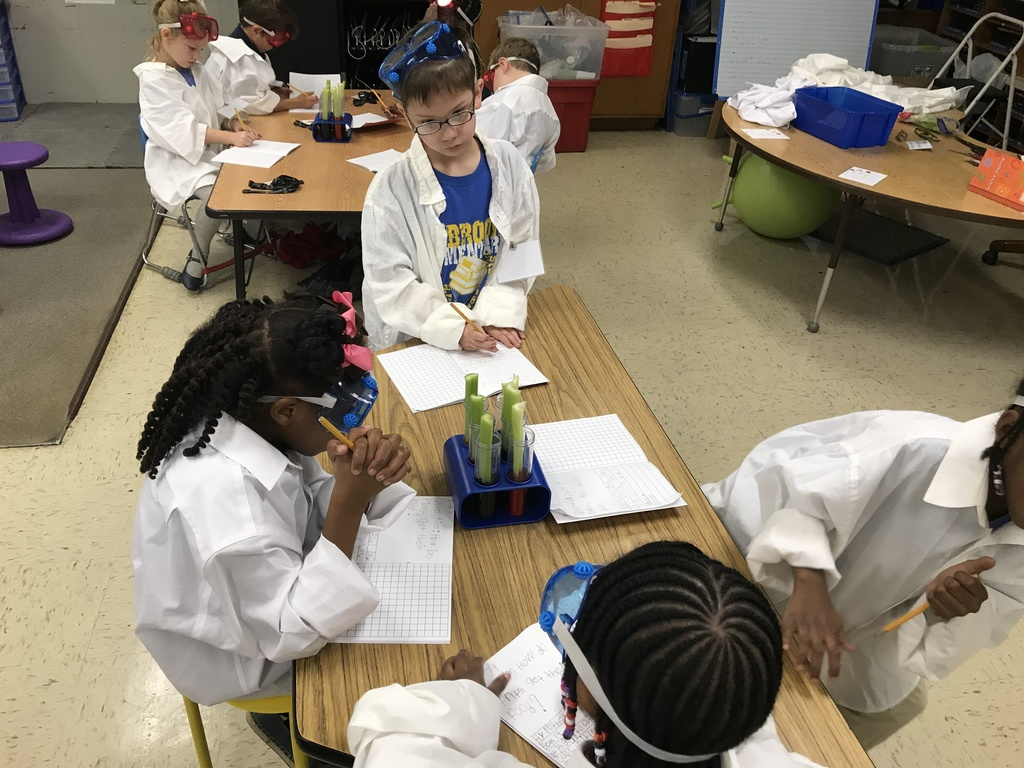 First grade science experiment