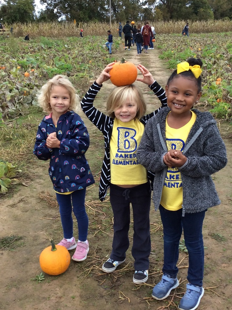 Kindergarten field trip to pumpkin patch