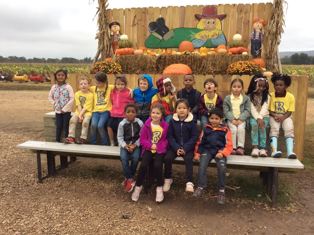 Kindergarten field trip to the pumpkin patch