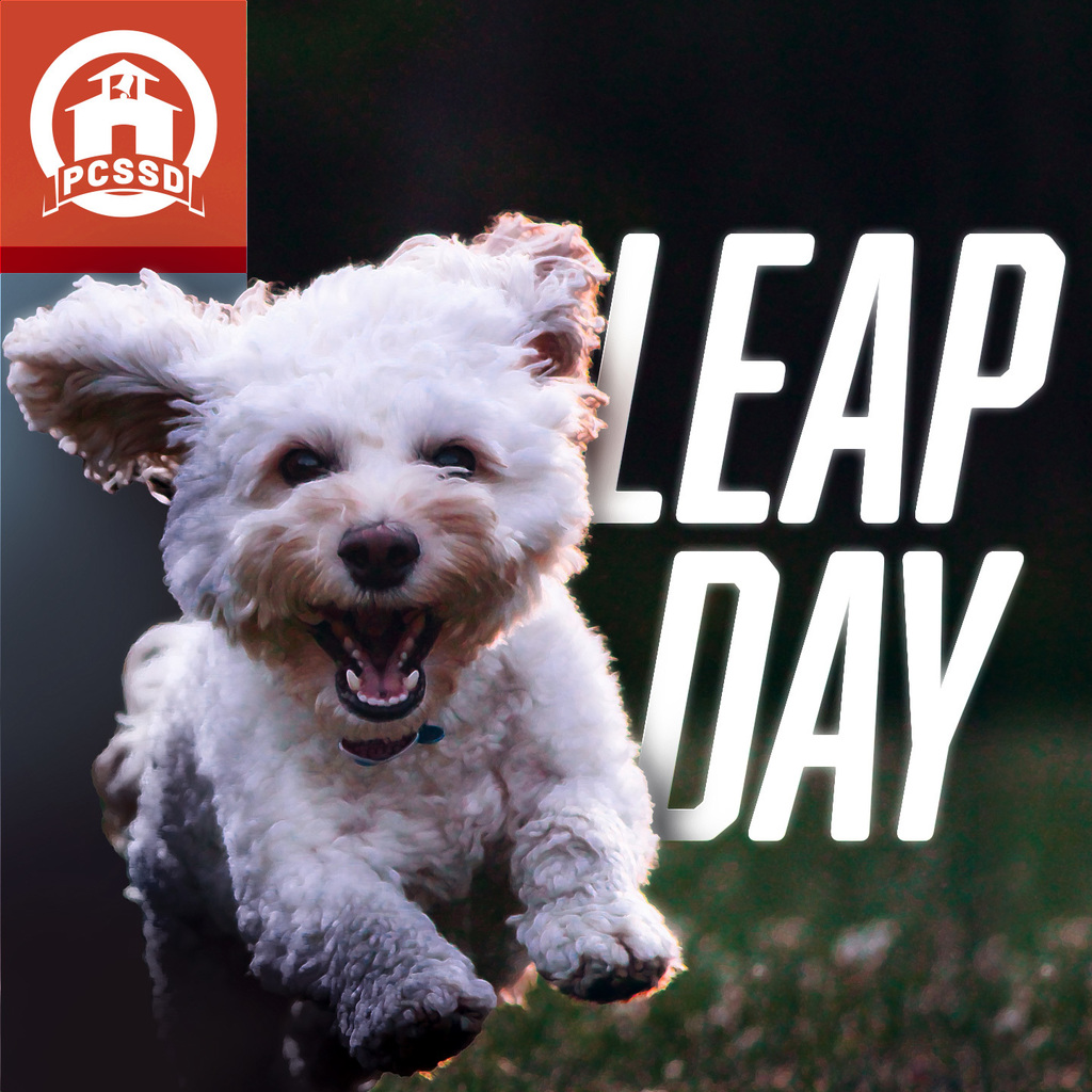 "Small dog leaping in front of text ""Leap Day"""