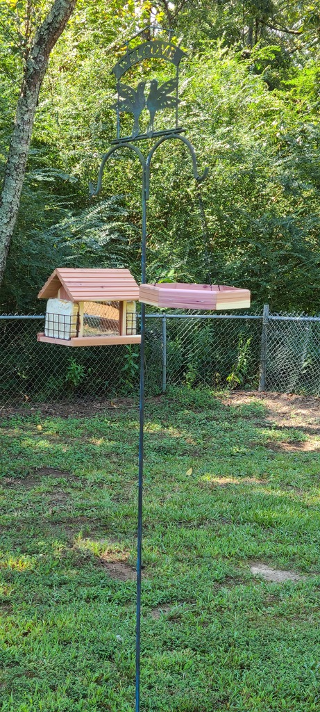 lawson bird feeder